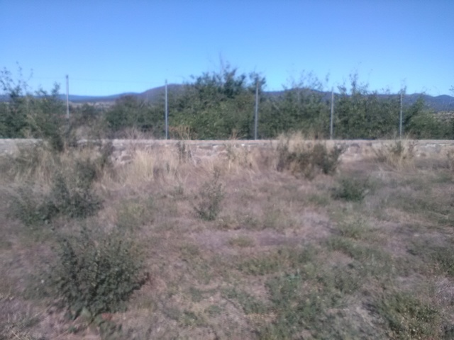 VENTA SOLAR EN MUNICIPIO DE ALMARZA - foto 7