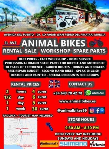 BICYCLE STORE RENTAL SALE WORKSHOP PARTS - foto 2