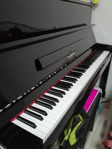 SE VENDE PIANO VERTICAL SANDNER - foto 3