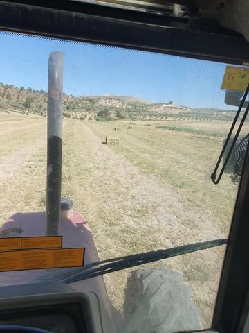 PRESTACIONES SERVICIOS AGRICOLAS - foto 4