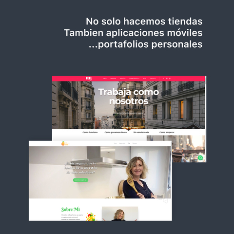 DISEÑO,  SEO Y  MANTENIMIENTO SITIOS WEB.  - foto 5