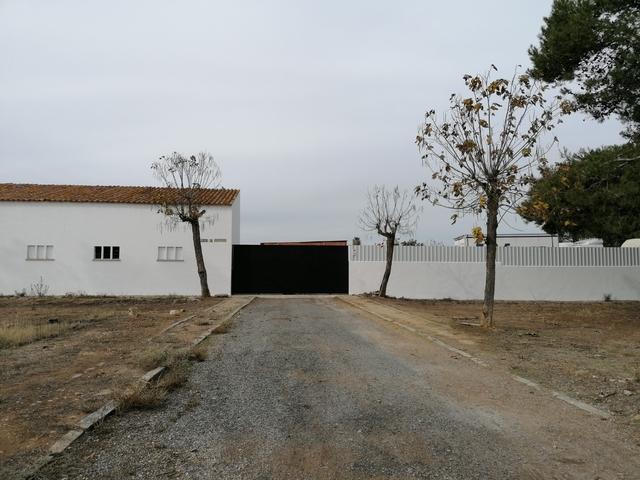 ALVARADO - foto 3