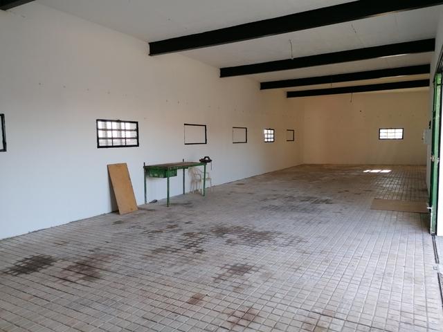 ALVARADO - foto 5