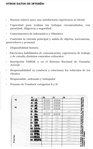 REPARTIDOR/CONDUCTOR/CHÓFER PROFESIONAL - foto 2