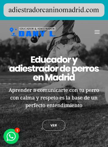 EDUCADOR CANINO EN MADRID CAPITAL - foto 8