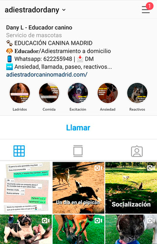 ADIESTRADOR CANINO MADRID CAPITAL - foto 5