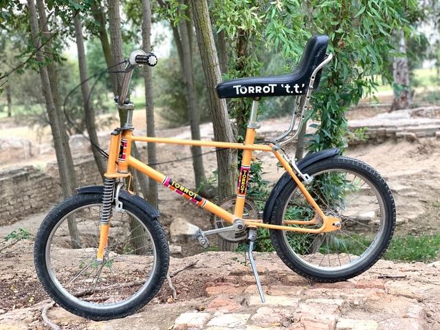 Bicicleta Torrot Tt