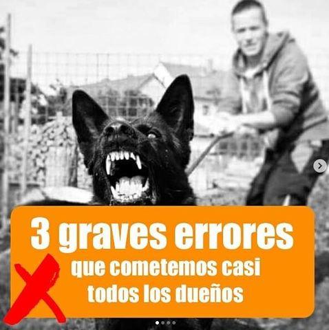 CONDUCTAS NO DESEADAS - foto 6