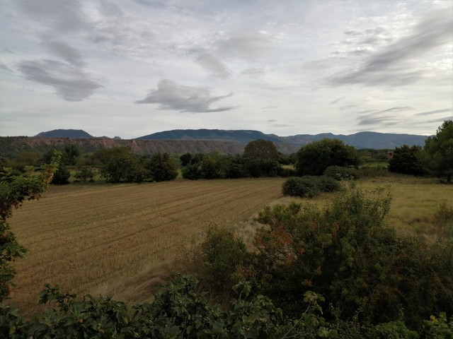 LARDERO - foto 6