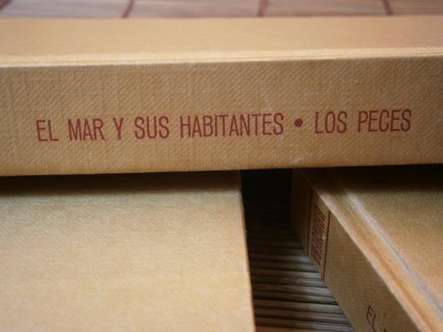 EL MAR Y SUS HABITANTES - LOS PECES - foto 3