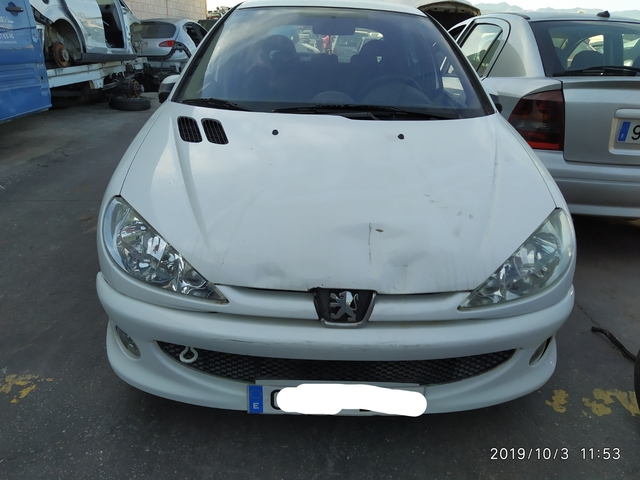 DGA 19.016 Derivabrisas para PEUGEOT 206 206+ 1998-2007 206 SW 5 puertas