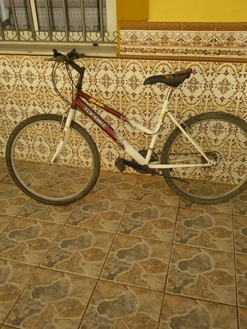 Bicicletas 2 Unidades