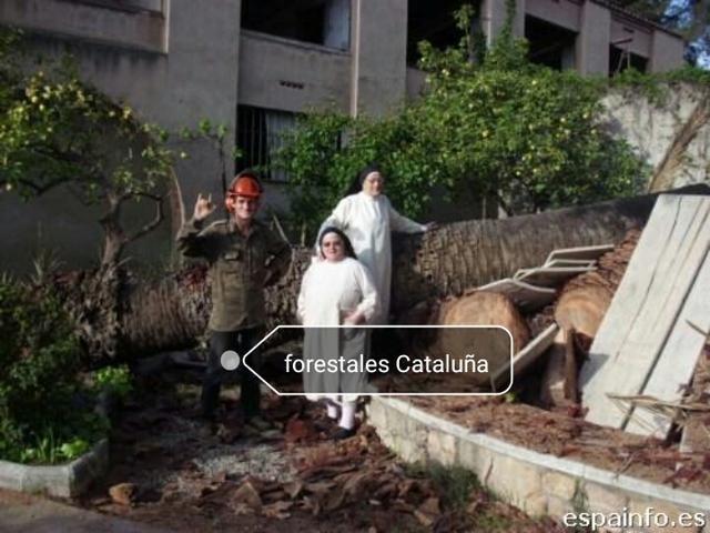 LIMPIEZA CRISTALES , CON CAMION CESTA - foto 1