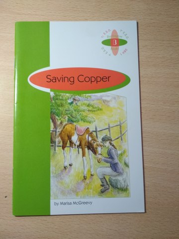 SAVING COOPER- MYSTERY OF THE TOMB - foto 2