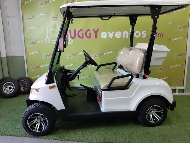 Buggy Golf Matriculados Nuevos