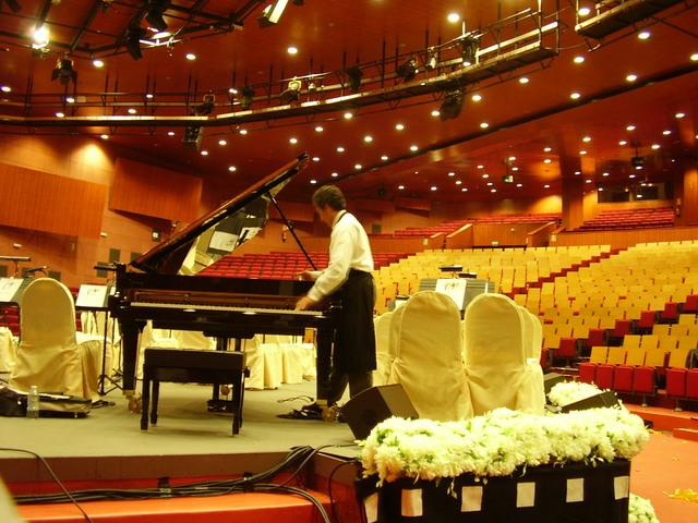 ARREGLO ,  AFINADOR DE PIANOS  EN NAVARRA - foto 1