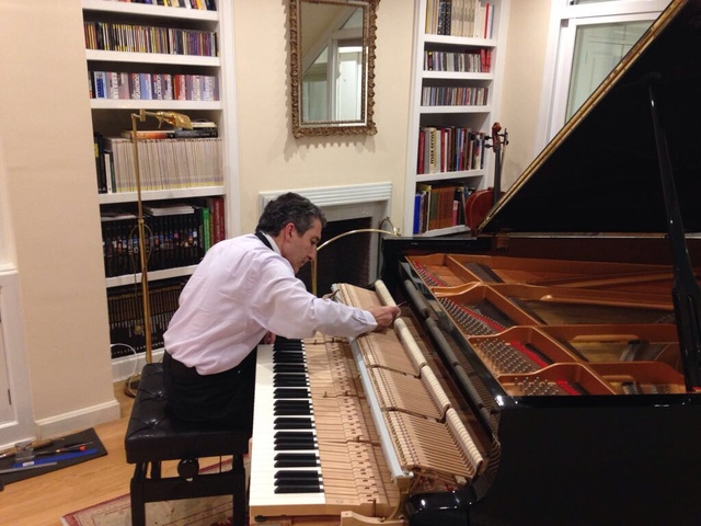 ARREGLO ,  AFINADOR DE PIANOS  EN NAVARRA - foto 9