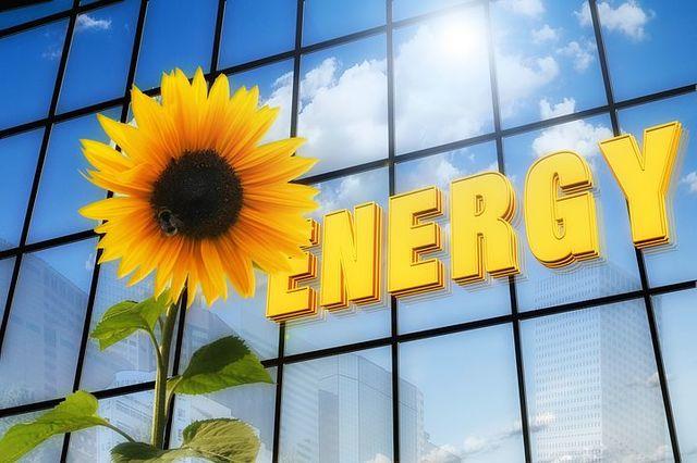 SOCI@ PROYECTOS ENERG SOLAR FOTOVOLTAICA - foto 2