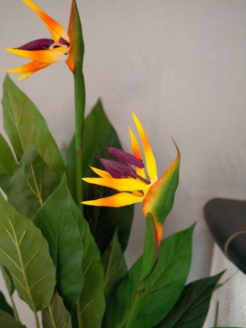 6 X Pequeño 60cm Flores Artificiales Ave del Paraíso