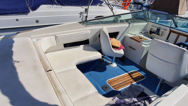 SEA RAY 22 OV - foto 3