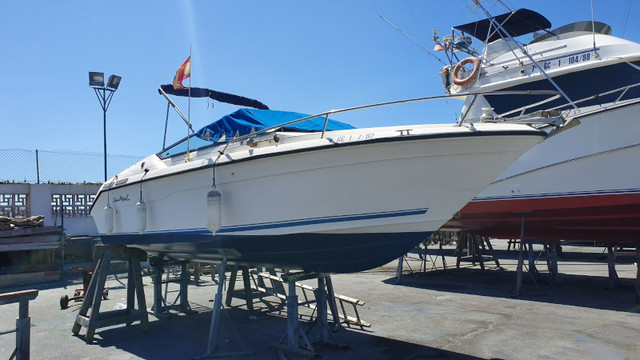 SEA RAY 22 OV - foto 4