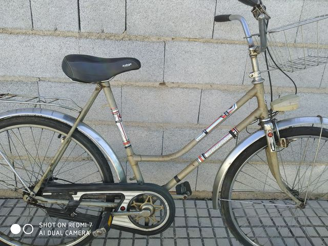 BICICLETA HOLANDESA CIUDAD MIXTA VINTAGE - foto 2