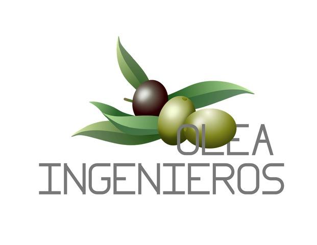 SERVICIOS DE INGENIERIA - foto 1