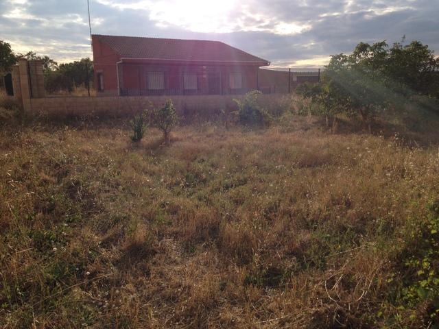 SOLAR EN FONTECHA - ARRIBA 29 - foto 3
