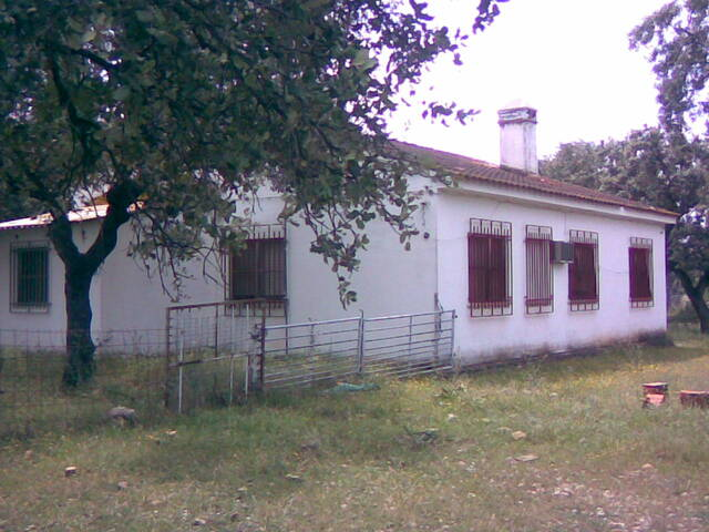 CEBADERO DE OVINO,  VACUNO Ó CERDOS - foto 6
