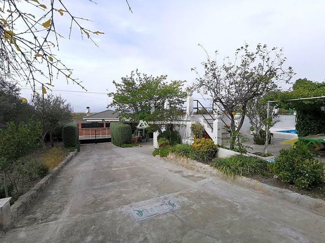 VISO DE SAN JUAN (EL) - foto 6