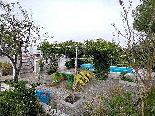 VISO DE SAN JUAN (EL) - foto 7
