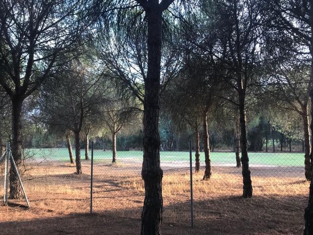 ALJARAQUE - foto 5