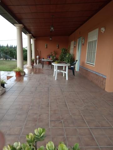 KM4 DE LOS PALACIOS A UTRERA - LETRADO - foto 3