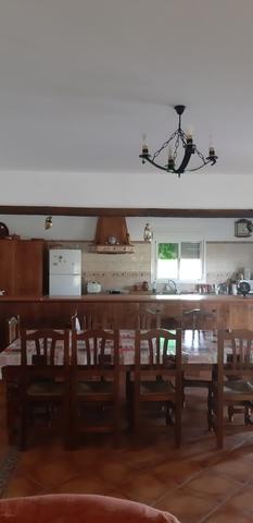 KM4 DE LOS PALACIOS A UTRERA - LETRADO - foto 4