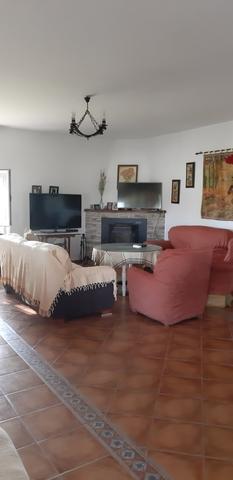 KM4 DE LOS PALACIOS A UTRERA - LETRADO - foto 8