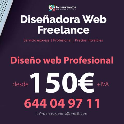 DISEÑADORA WEB FREELANCE - foto 1