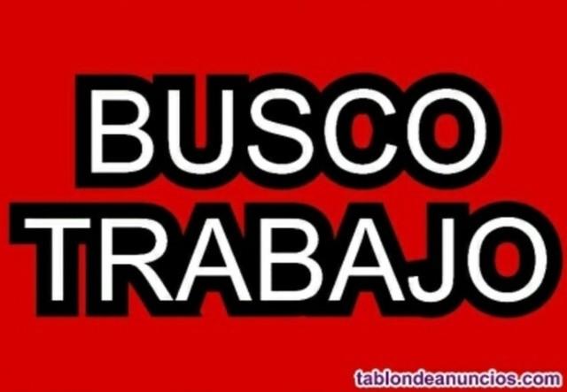CHÓFER DISPONIBLE BUSCO TRABAJO C + CAP - foto 1