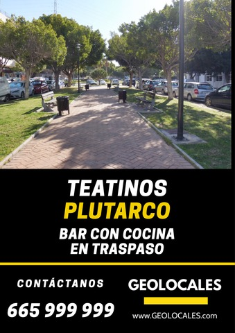 TEATINOS - PLUTARCO - foto 1