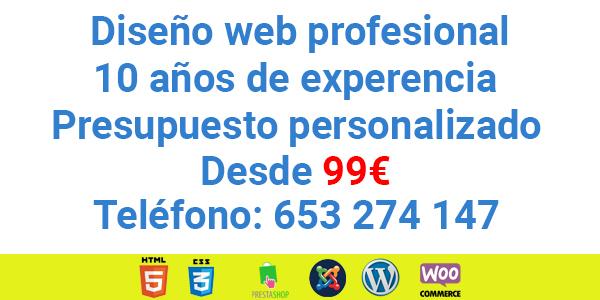 DISEÑO WEB PROFESIONAL DESDE 99 - foto 1