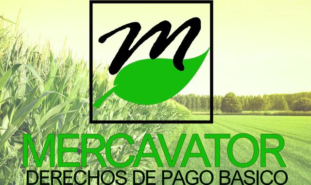 DERECHOS DE PAGO BÁSICO PAC 801 O 8. 1 - foto 1