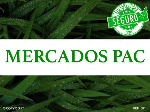 DERECHOS PAGO BÁSICO PAC - foto 1