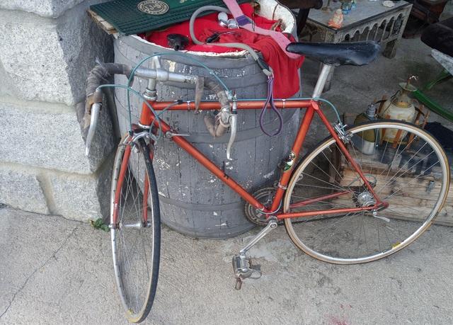 Bicicleta Clásica Zeus Colección.