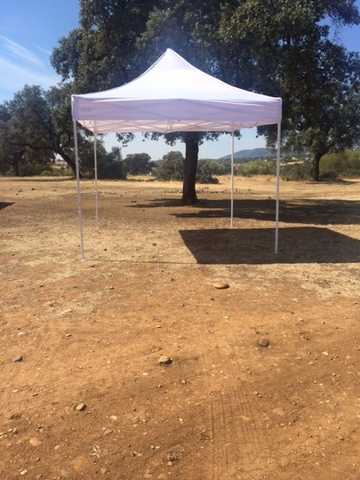 CARPA PLEGABLE 3X3 SIN LATERALES - foto 3