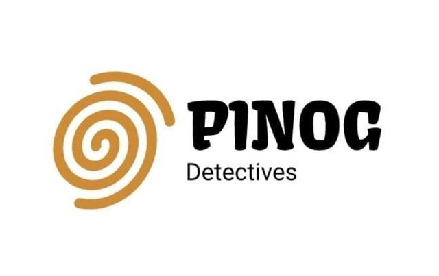GRUPO INVESTIS Y PINOG DETECTIVES - foto 3