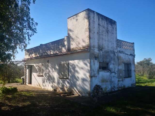 REF. 12464 SANTICHE CHICO (LOS MURGAÑOS) - foto 1