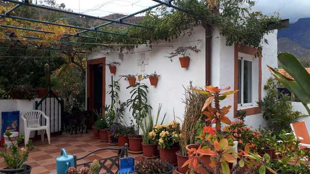 PRECIOSA FINCA CON ACOGEDORA VIVIENDA - foto 5