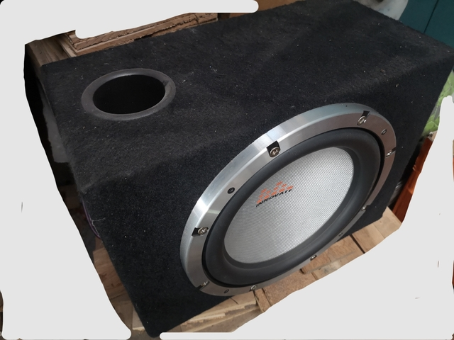 ESX Xenium de alta calidad 30cm subwoofer woofer Bass 300mm 600w