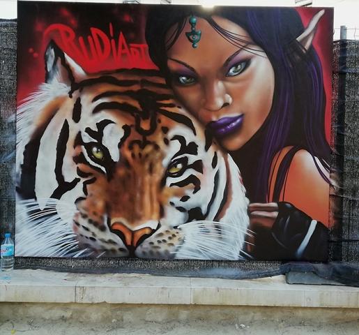 GRAFFITI DECORACION VALENCIA - foto 4