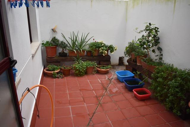 PISO EN MÉRIDA NORTE - foto 7