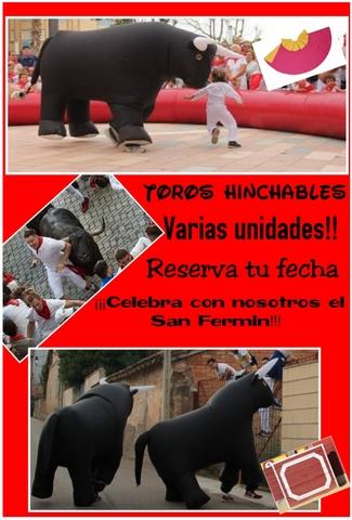 ENCIERROS TAURINOS - foto 1